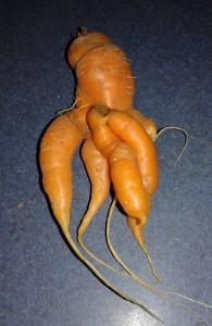 Alien carrot
